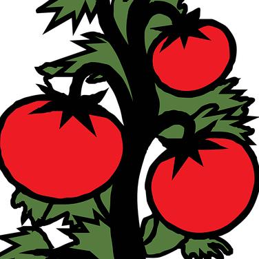 Adderson's Fresh Produce