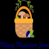 Nittany Mushroom Farm