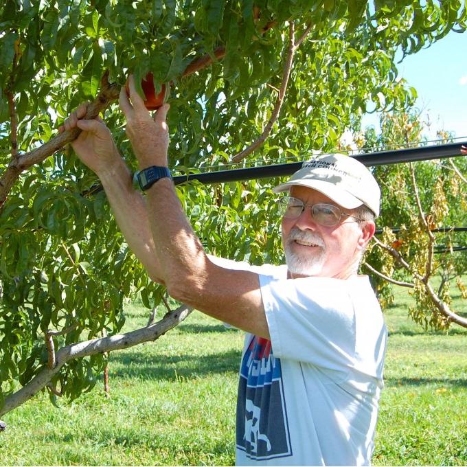 Morton's Organic Orchards