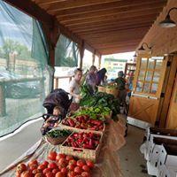 Isabelle Organic Farm
