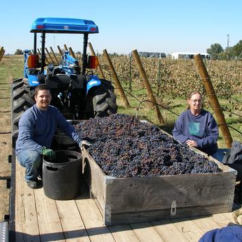 Vizcaya Winery