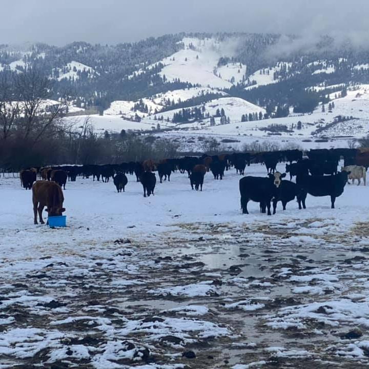 Weiser River Ranch