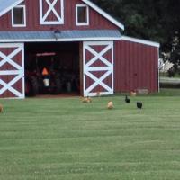 Roundtop Farm