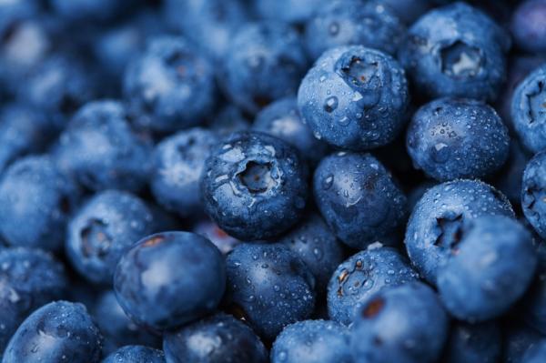 Rod's Blueberries