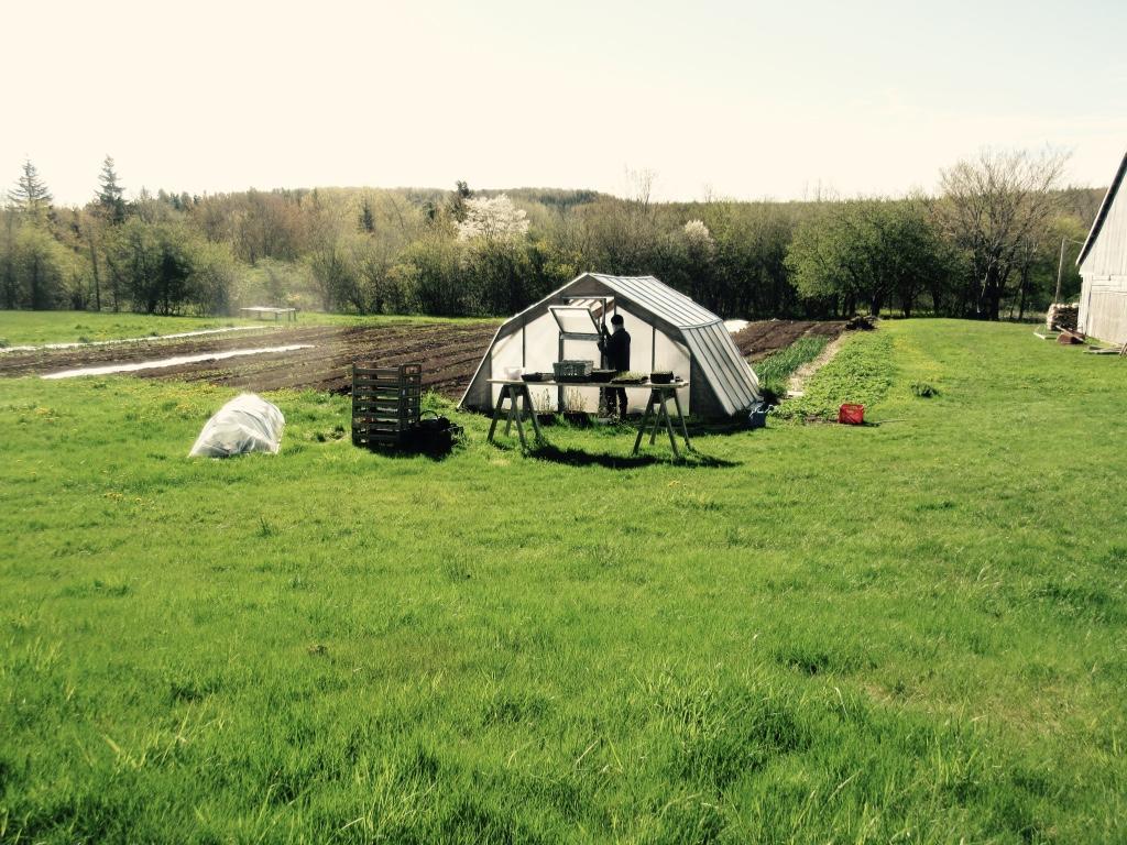 A & X Farms