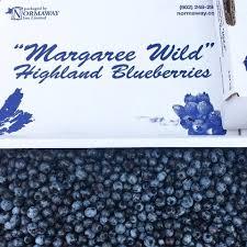 Margaree Wild Blueberries
