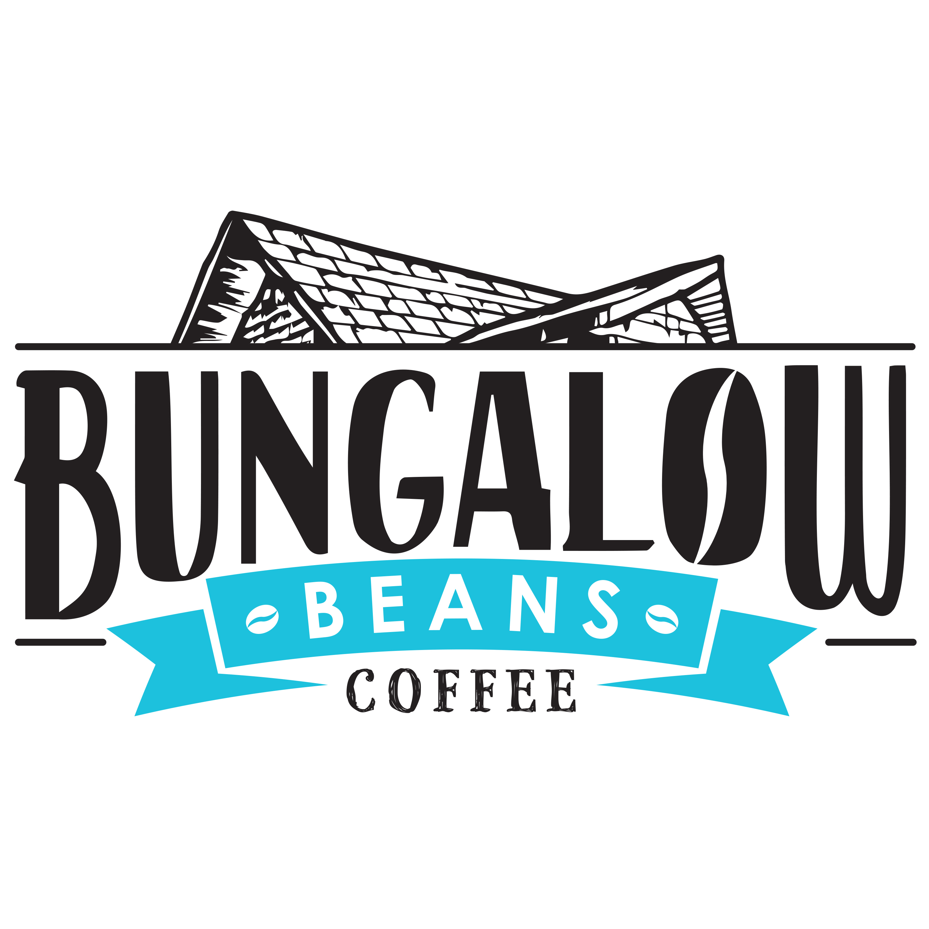 Bungalow Beans Coffee