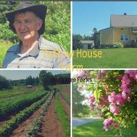 Yellow House Farm
