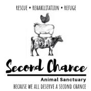 Second Chance Farm Sanctuary, MA