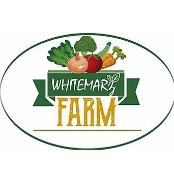 Whitemarz Farm, MA