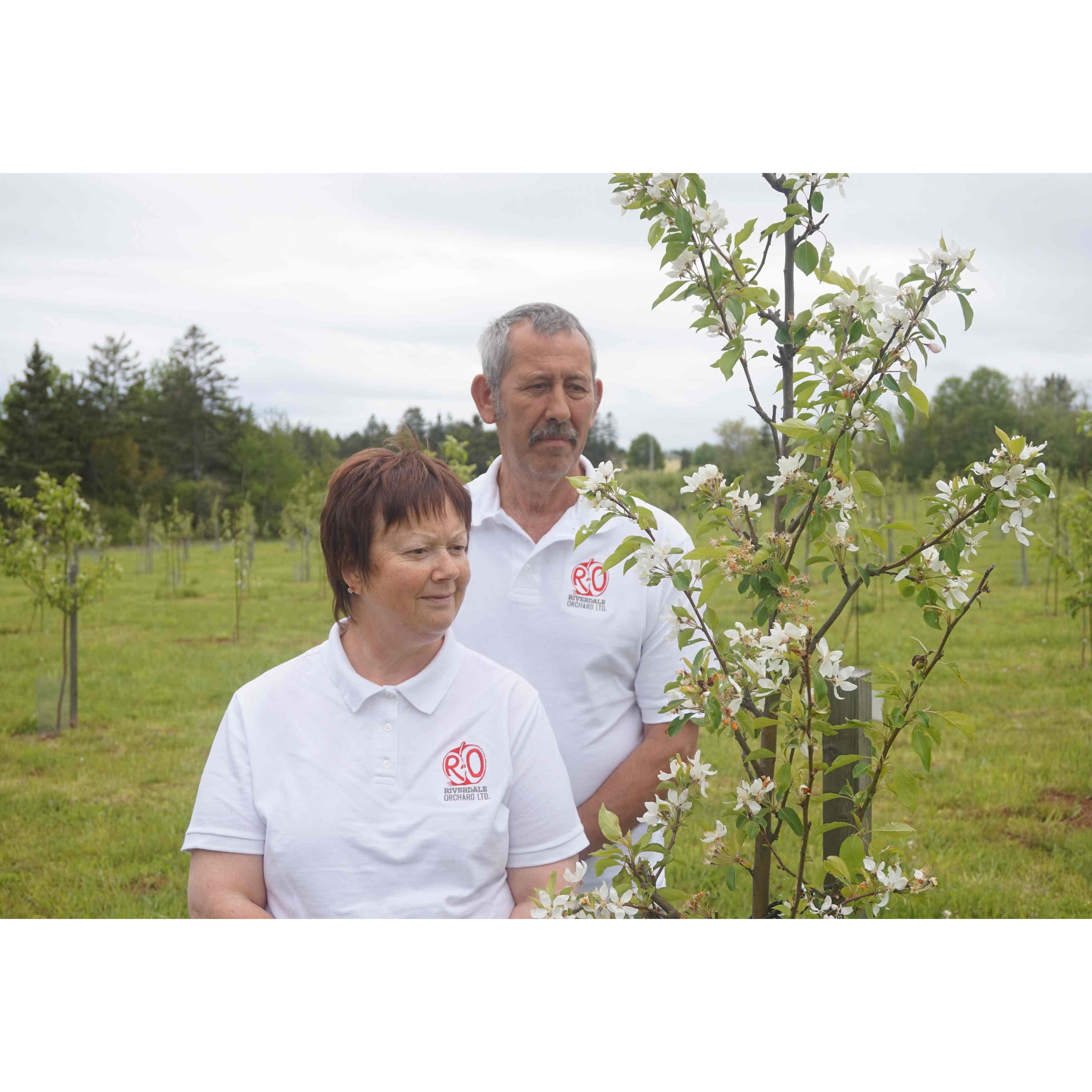 Riverdale Orchard Ltd