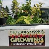 Incubator Seed Farm