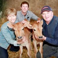 Miller's Dairy