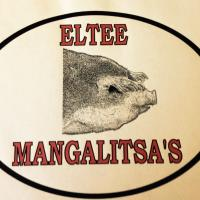 ELTEE Mangalitsa's