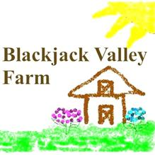 Blackjack Valley Farms