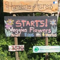Harstine Acres