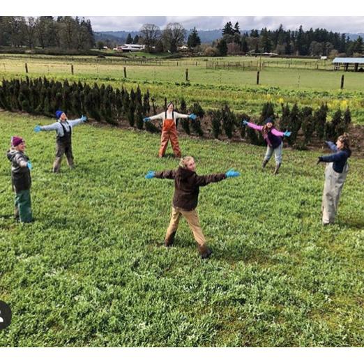 Vibrant Valley Farm