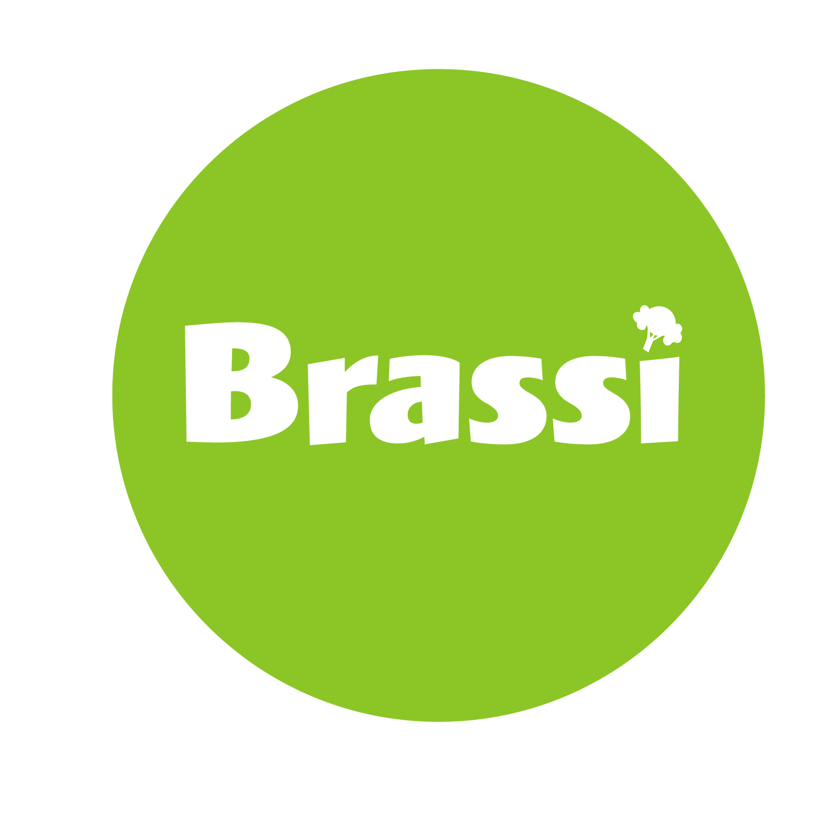 Brassi