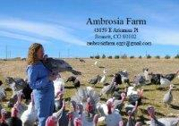 Ambrosia Farm LLC