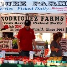 Rodriguez Farms