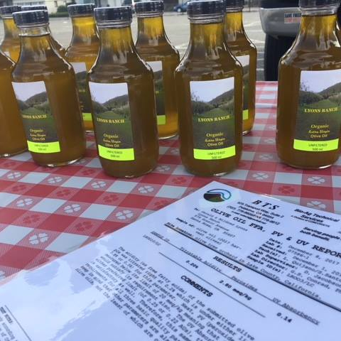 Lyons Olive Oil