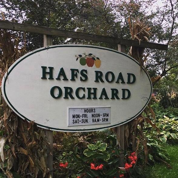 Hafs Road Orchard