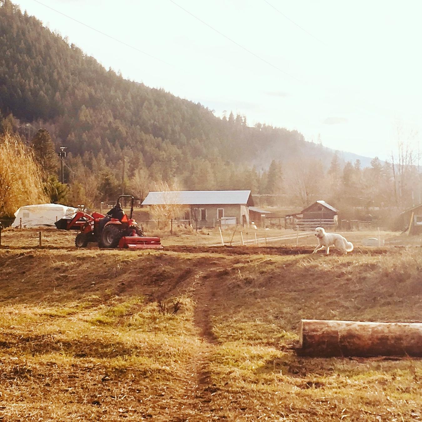 Riverbend Farm