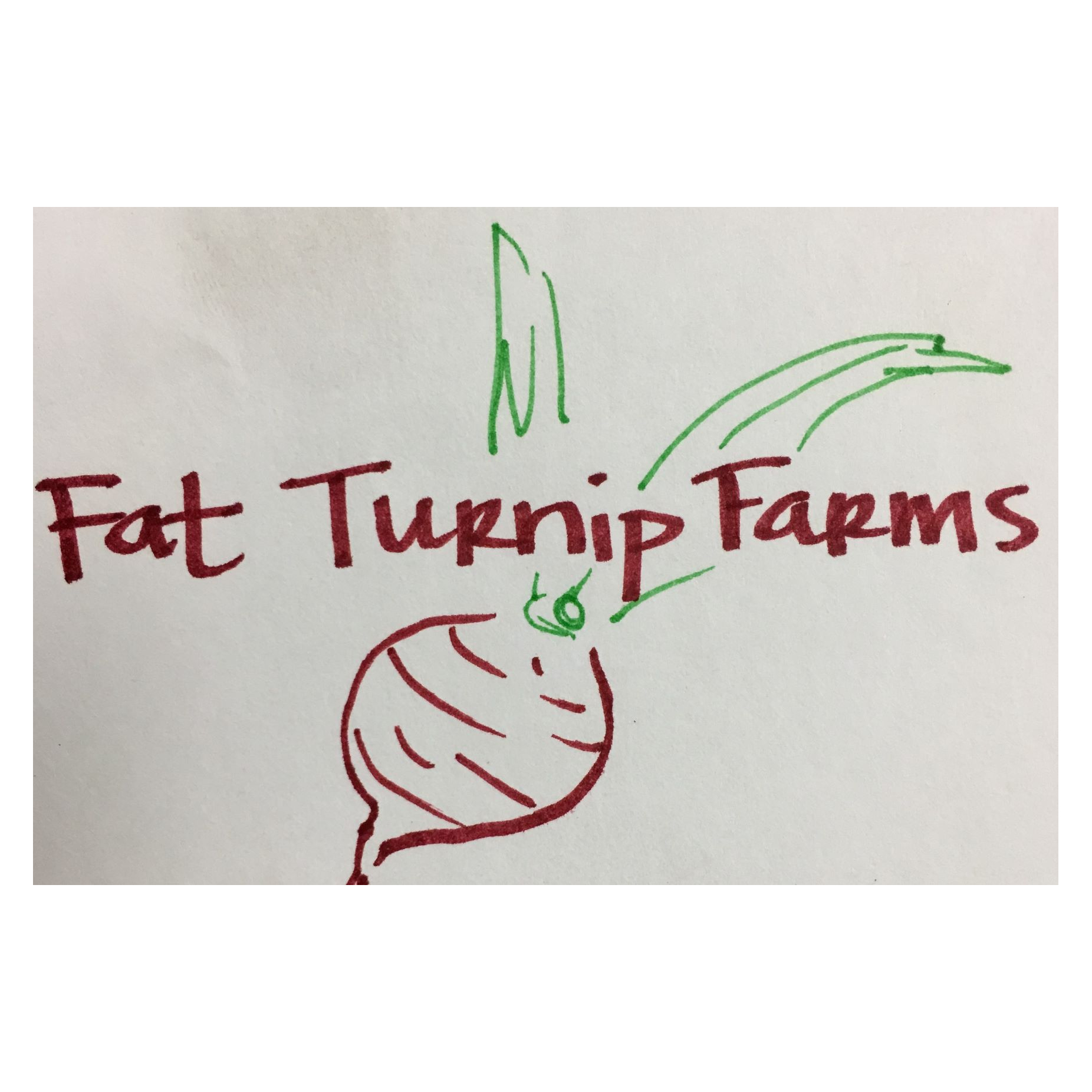 Fat Turnip Farms