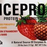 Icepro2go