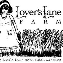 Lover's Lane Honey