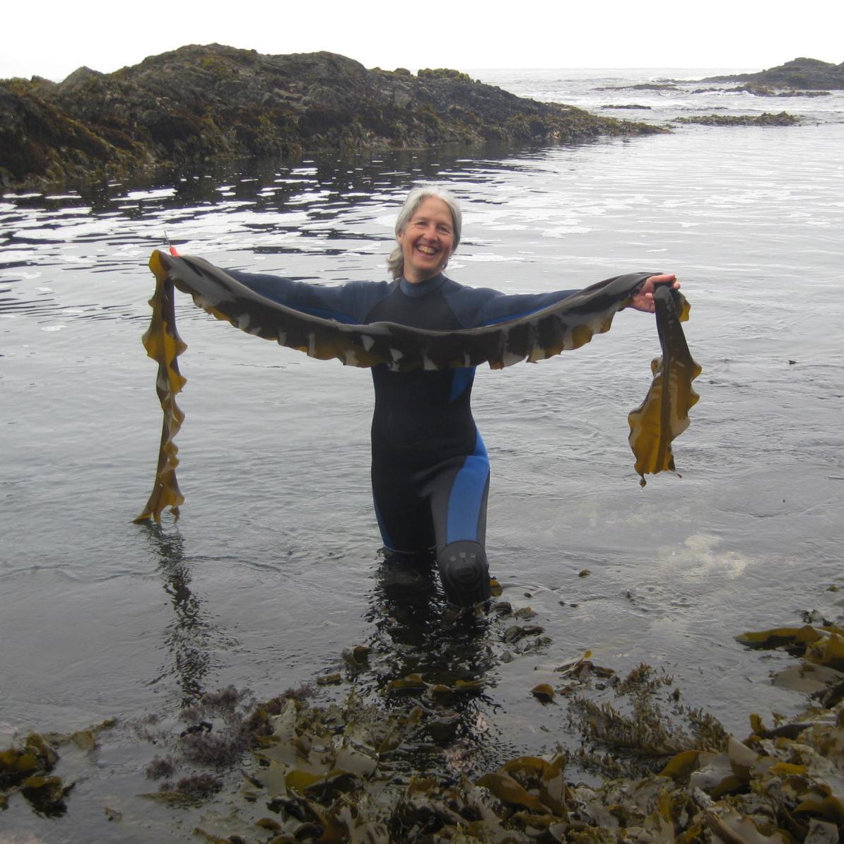 Yemaya Seaweed