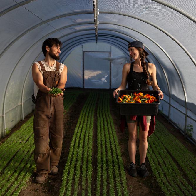 Earthworker Farm via FEED Sonoma