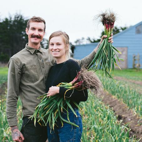 Nye Ranch - Mendocino Renegade Organic