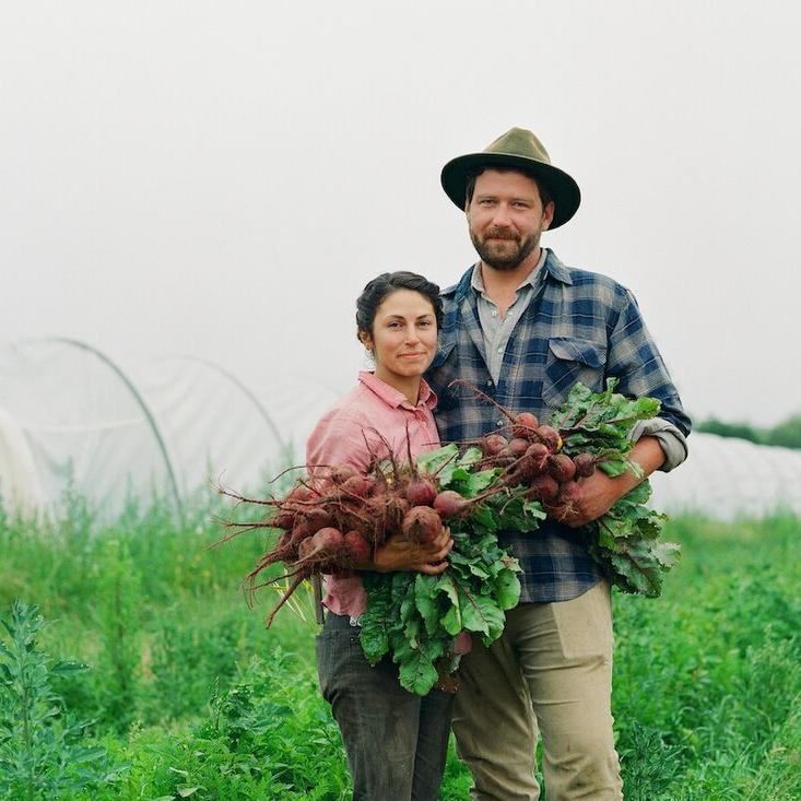 Suncatcher Farm via FEED Sonoma