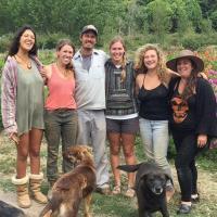 Oz Farm - CCOF Organic