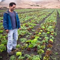County Line Harvest via FEED Sonoma