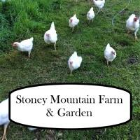 Stoney Mountain Farm & Garden