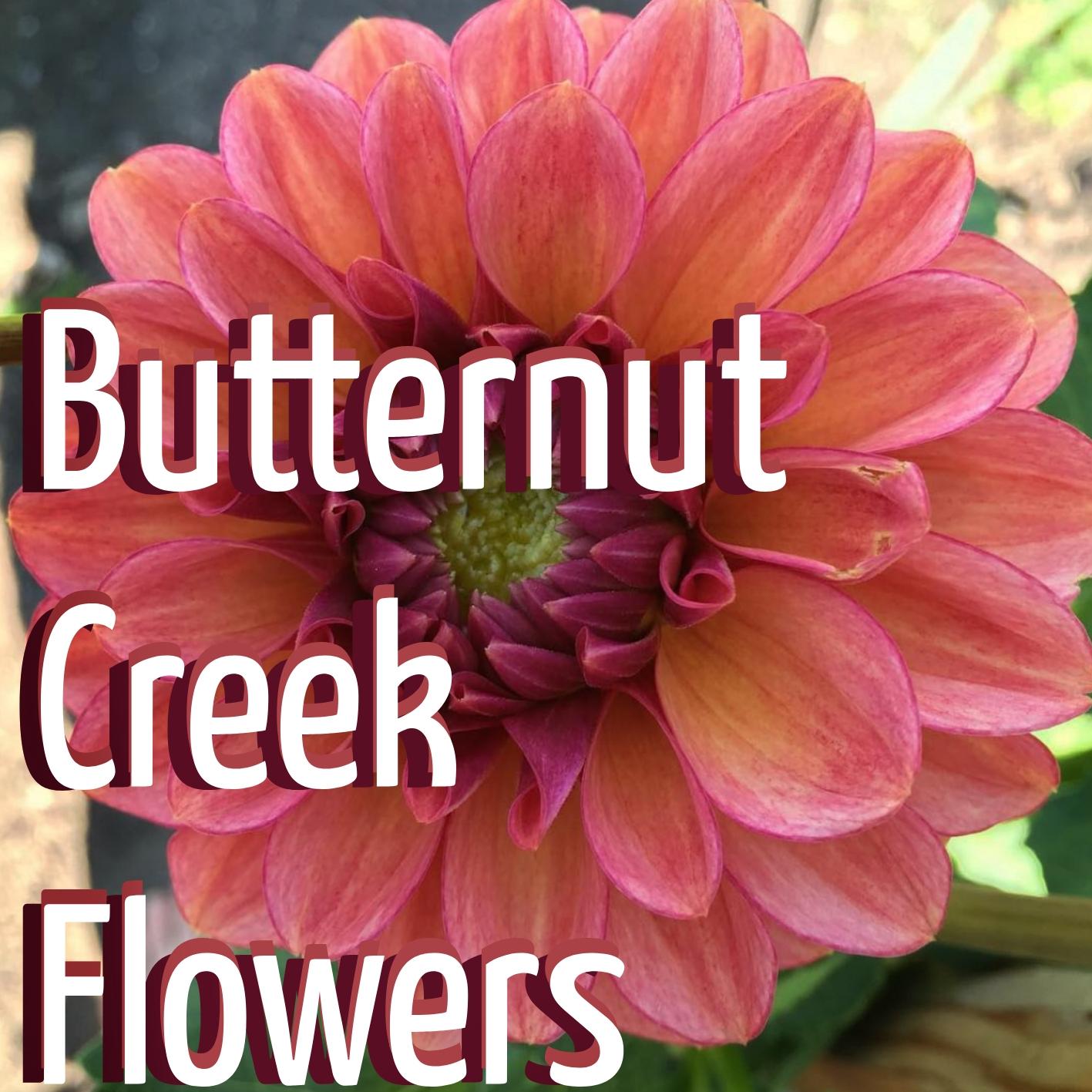 Butternut Creek