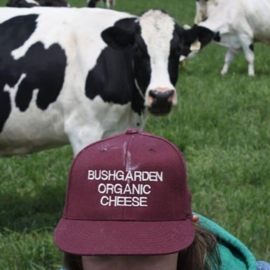 Bushgarden Farmstead Cheese