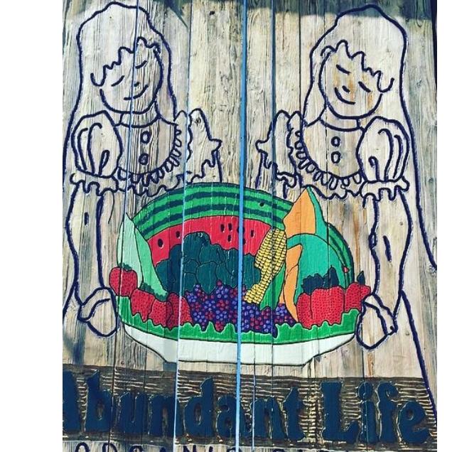 Abundant Life Organic Farms (Certified Organic)