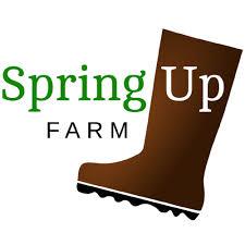 Spring Up Farm