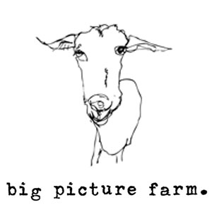 Big Picture Farm