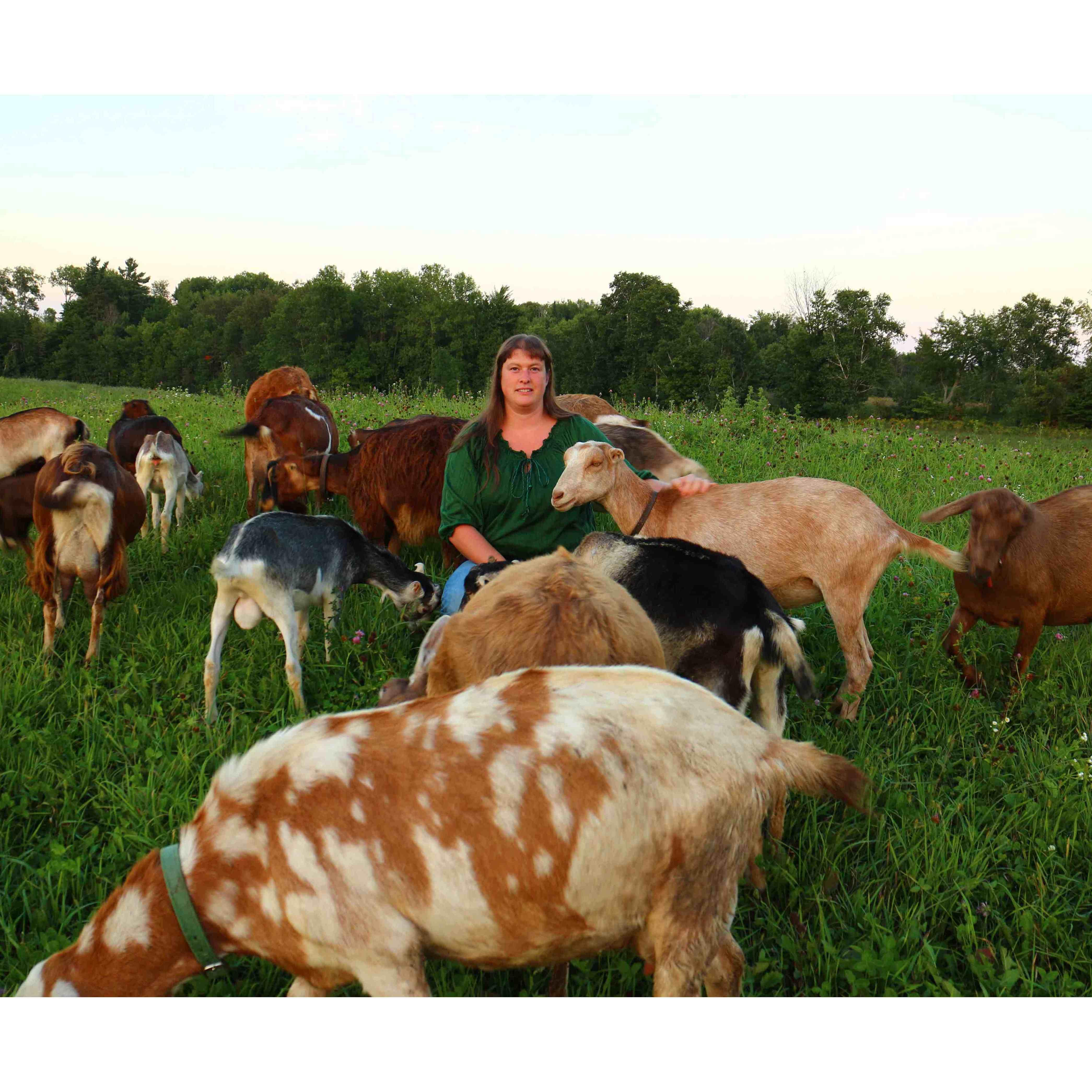Sarah's Goats