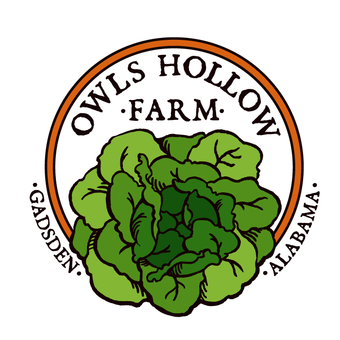 Owls Hollow Farm
