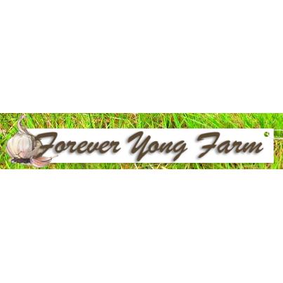 Forever Yong Farm