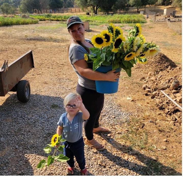 Tin Roof Farm
