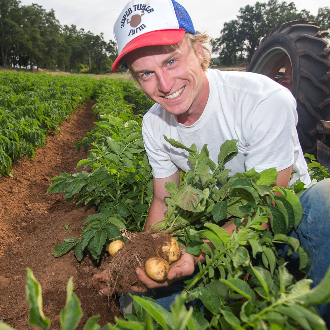 Super Tuber Farm - Certified Organic CCOF