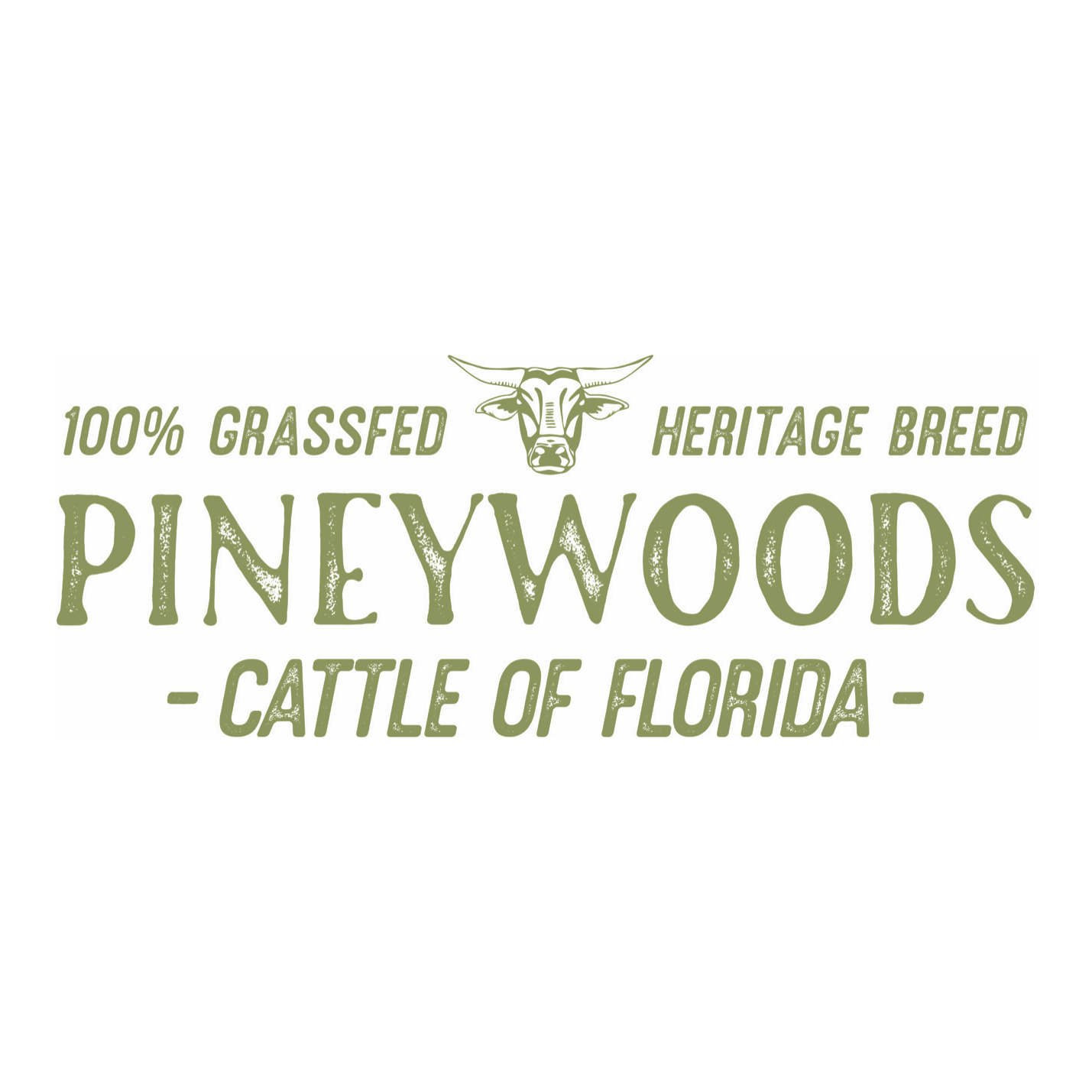 Pineywoods Cattle of Florida