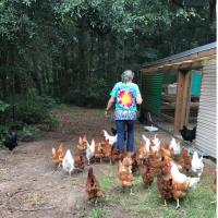 Ragged Glory Farm