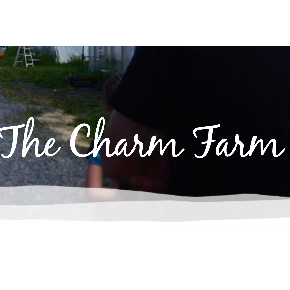 Charm Farm*
